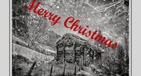 Årets julekort 2013 ( Foto Per Sibe)